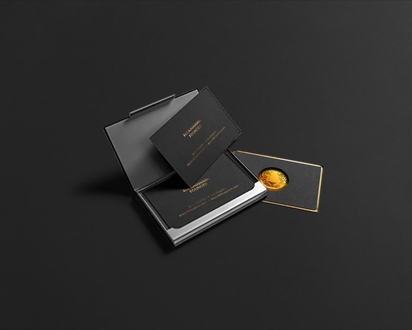 Tiger Global – Branding